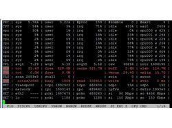 Веб сервер 4Гигабита трафика