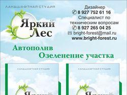 """Информационный стенд """"Яркий лес"""""""