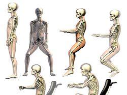 Скелеты 2