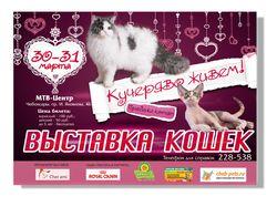Афиша Выставка кошек