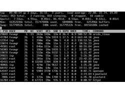 Комплексное обслуживание сервера - 1000 Р.