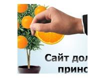 Сайт доход