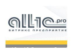 Оптимизация сайта дилеров 1с в Москве