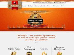 Дизайн сайта на CMS