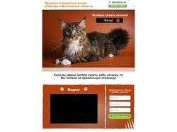 Интернет-магазин породистых кошек