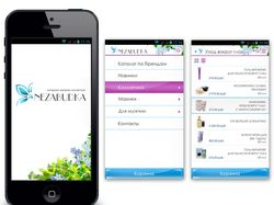 Дизайн приложения интернет-магазина сантехники