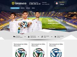Brazuca - официальный мяч чемпионата мира 2014