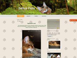 Сайт-визитка питомника кошек