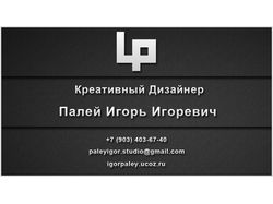 IP Креативный Дизайнер