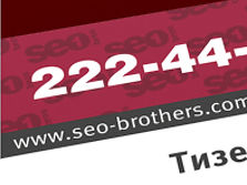 Seo Brothers