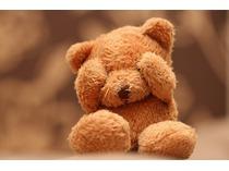 Текст на главную для ИМ (Плюшевые медведи)