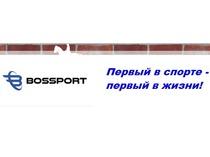 Нейм + домен + слоган для ИМ(Спортивная одежда)