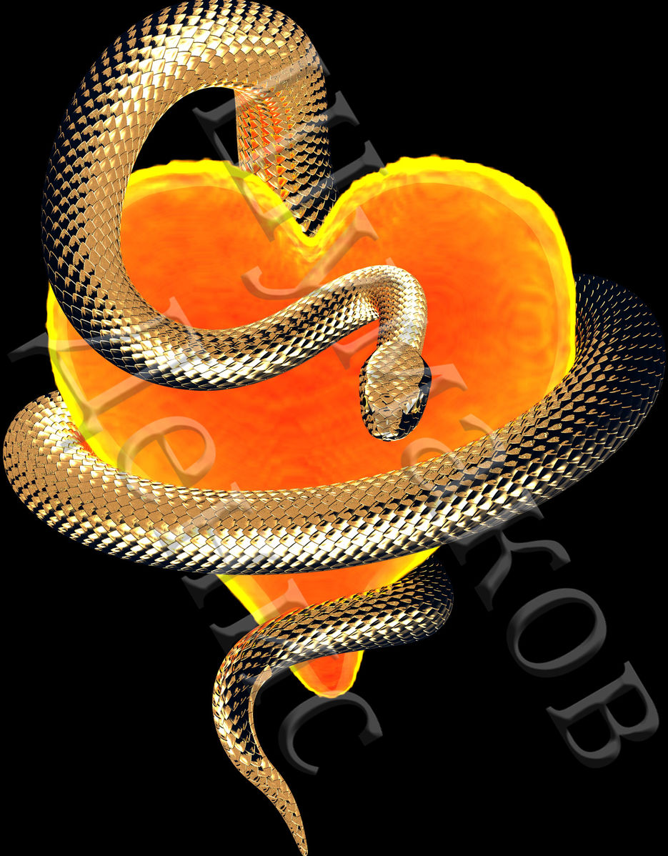 настоящее красивые картинки змей с золотом нас всё