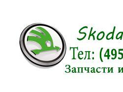 Шапка для сайта Skoda-MSK