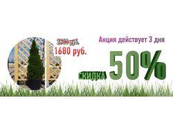 Баннеры для компании EcoPlant.