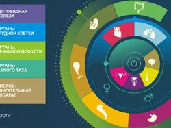 Инфографика_медицина