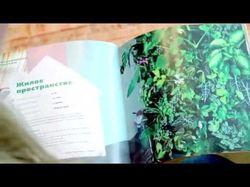 Lafasad. Вериткальное озеленение