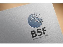 Лого + Стиль | bsf-project.com