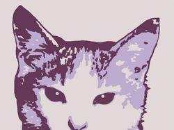 pop art (cat)