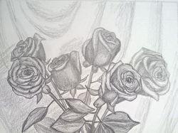 Карандаш, розы