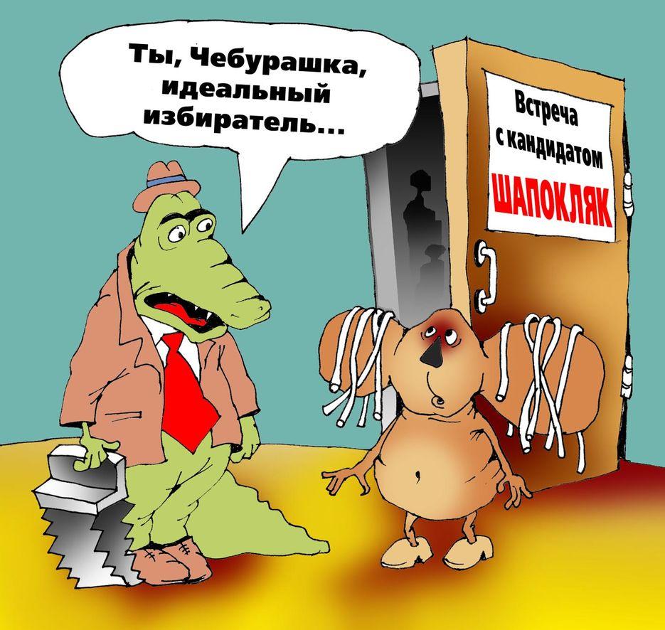 картинки приколы выборы в депутаты регионах