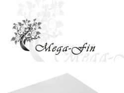 mega-fin