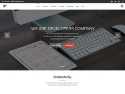 Дизайн европейской компании разработчиков