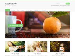 Установка и настройка Accelerate темы Wordpress