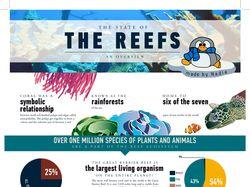 Инфографика про рифы и кораллы