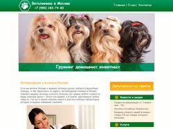 Дизайн сайта Ветклиники в Москве