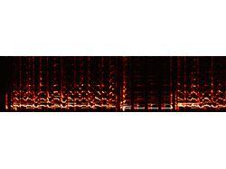 Программа анализа аудио - определение ритма музыки