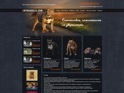 Несколько вариантов дизайна питомника для собак