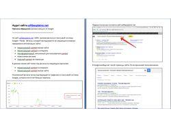 Диагностика и лечение ручных санкций от Google