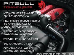 Рекламный баннер PitBull