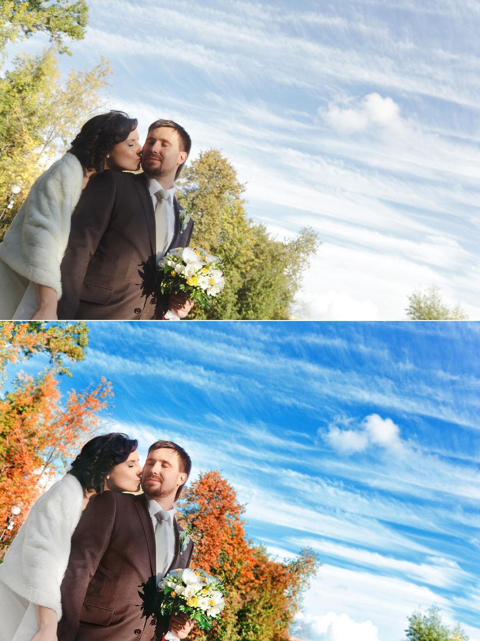 телеуты делегировать обработку свадебных фото украшения