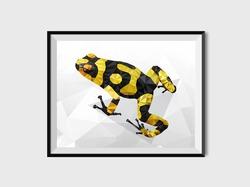 Poster Polygon Frog