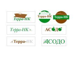 Логотип + фир. бланки для Терра и Асадо