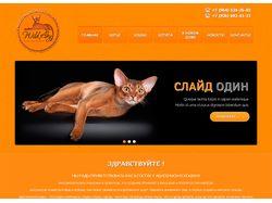 """""""WildAby"""" - Питомник абиссинских кошек"""