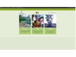 Сайт фирмы ландшафтного дизайна, экошколы, экоферм