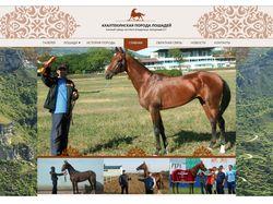 Лошади ахалтеки