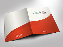 Дизайна папки для компании DOMESTIC STAFF