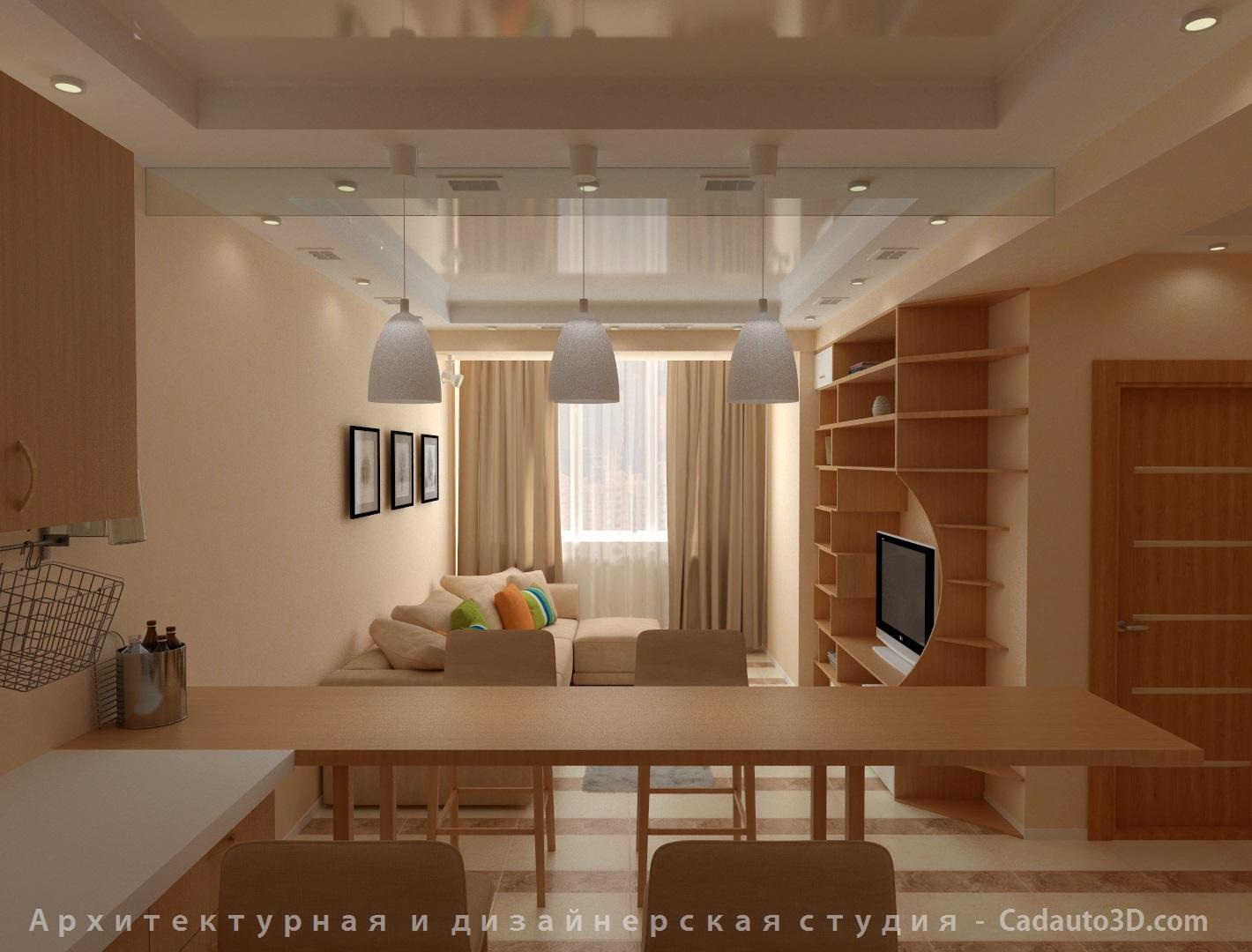 Кухная и гостиная комната