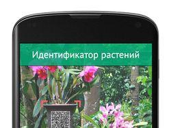 Приложение для идентификации растений