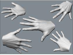 Hand Sculpt