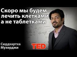 Озвучка выступлений конференций Ted Talks