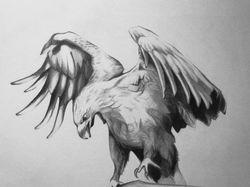 Орёл.