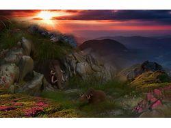 Закат эпохи мамонтов (3D)
