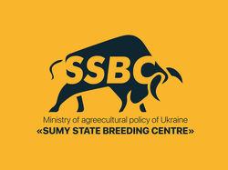 Логотип SSBC