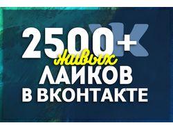 Добавлю 2500+ лайков Вконтакте