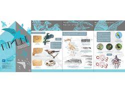 Дизайн передвижной выставки про птиц